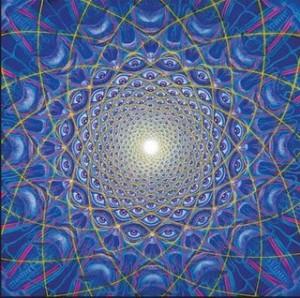 alex grey collective vision copy