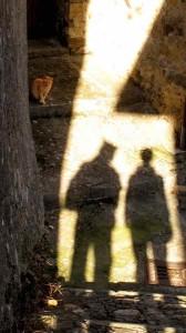 Shadows & Cat